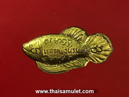 B.E.2540 Pla Kad Thong or magical fish amulet (GOD44)